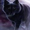 Character Portrait: Kissandra