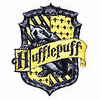 Hufflepuff Common Room: After Classes, here you go! Go Hufflepuff!