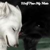 Wolf Paw: My Mate