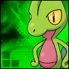 Character Portrait: Darragh the Treecko